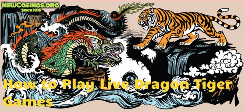 Live Dragon Tiger Game
