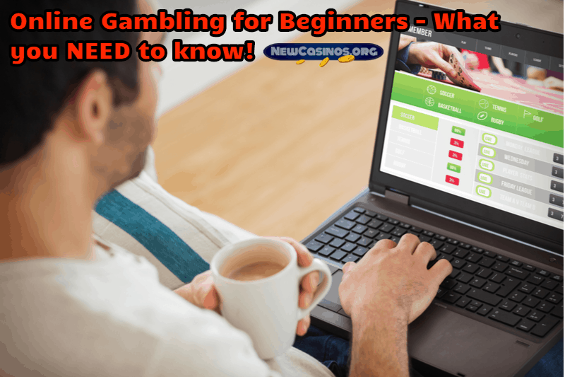 Online Gambling for Beginners