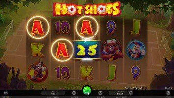Hot Shots Slot Win